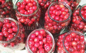 раскладывание ягод по банкам