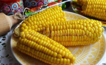 как сварить молодую кукурузу